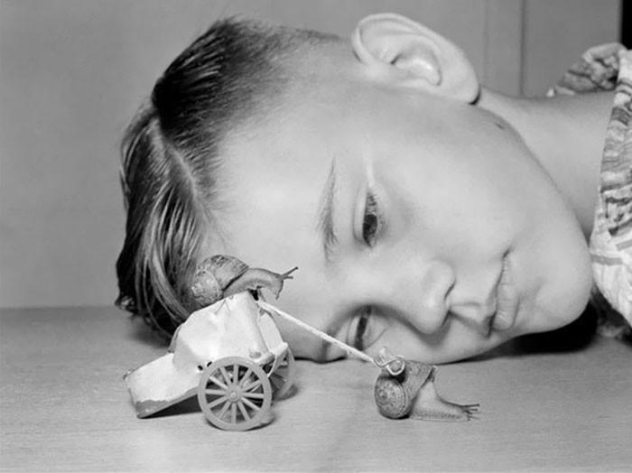 19. 10-летний Мартин наблюдает за гонкой улиток, Калифорния, 1954 год детство, прошлое, фотография