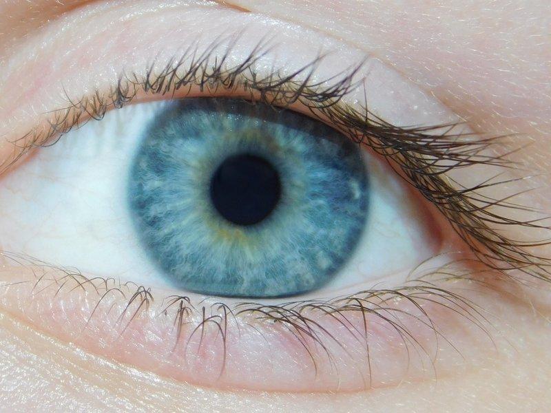 Голубые глаза в мире, люди, мутанты, организм, тело