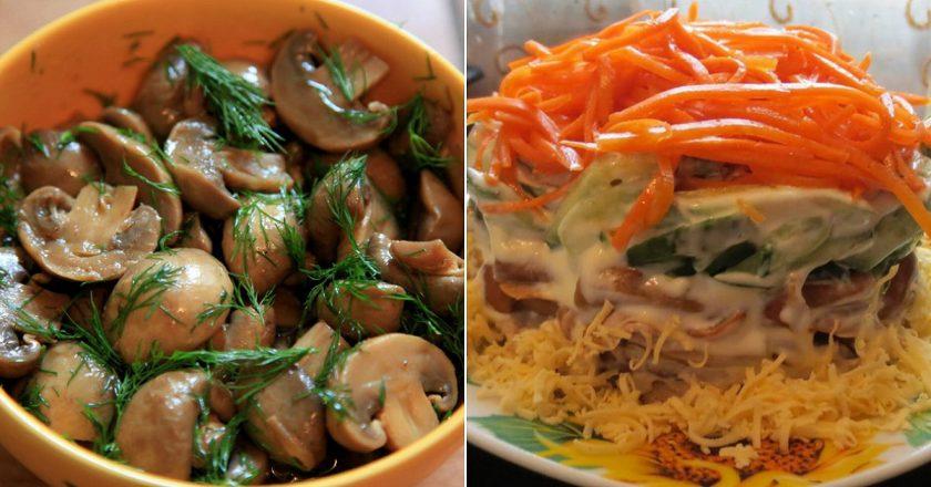 Рецепты салатов из шампиньонов