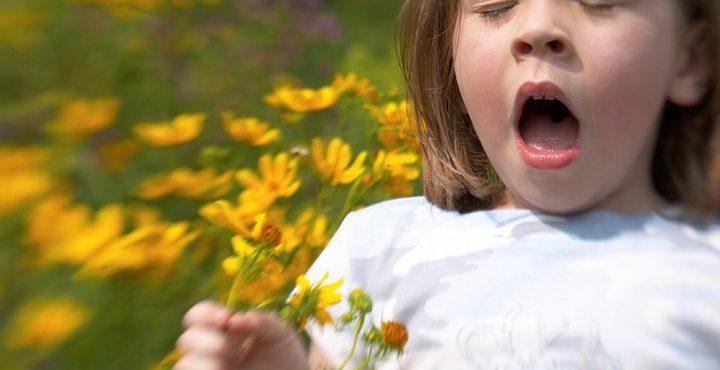 Сезонная аллергия больше не приговор