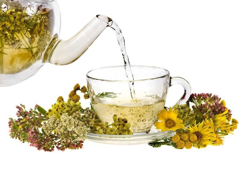 Полезные травы для заваривания чая