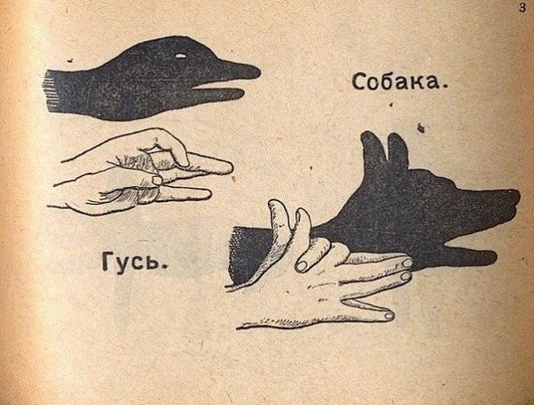 Как сделать тени животных при помощи рук? Вернись в детство!