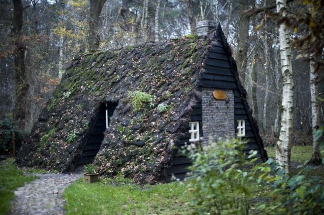 Дом своими руками в лесу и