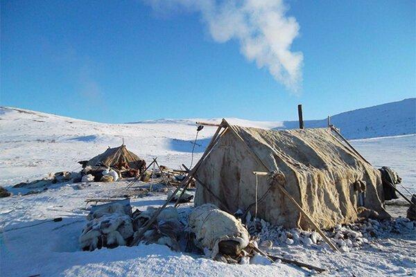 Обнаружены гены, которые помогли народам Сибири адаптироваться к климату наука, сибирь, ученые