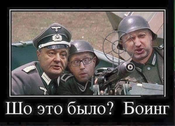 Зачем Украина сбила Боинг
