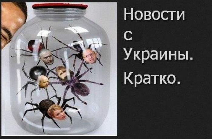 Донецк – «длинная рука Кремля» и осенние каникулы