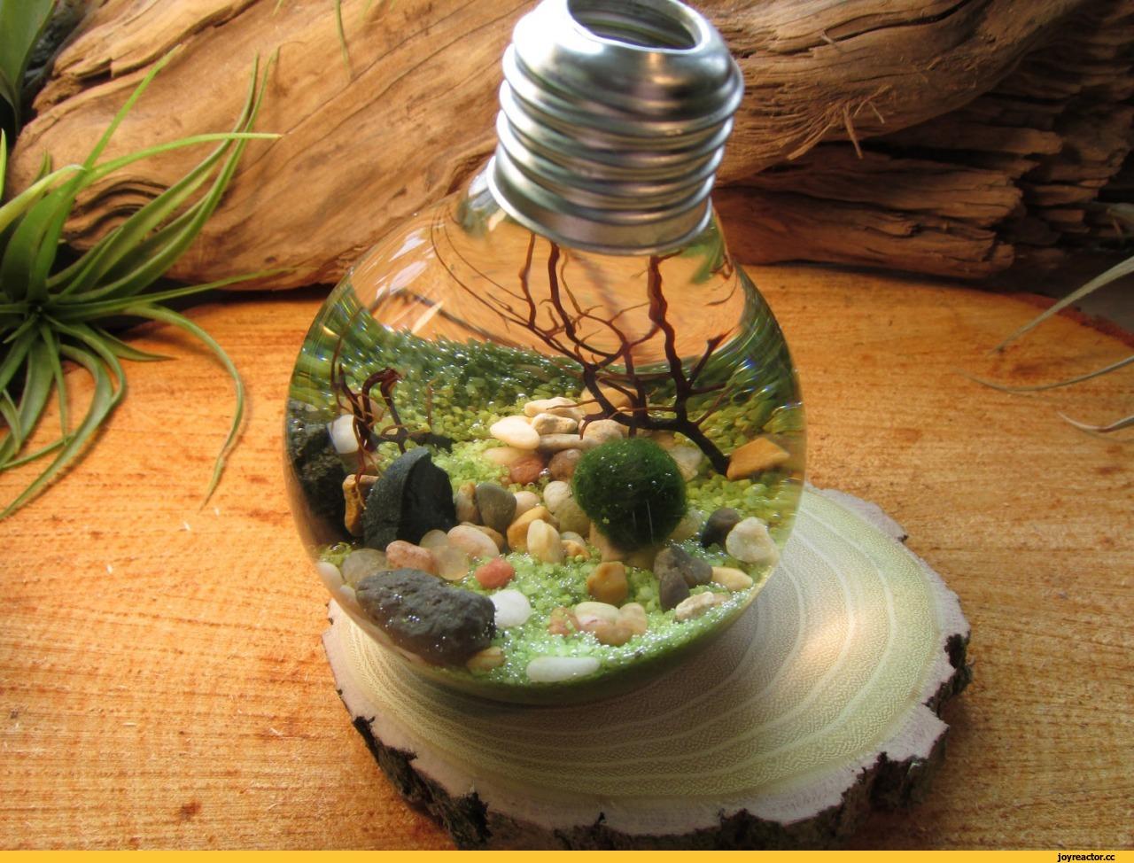 День земли, поделки, 22 апреля, экология, экологический, праздник 39