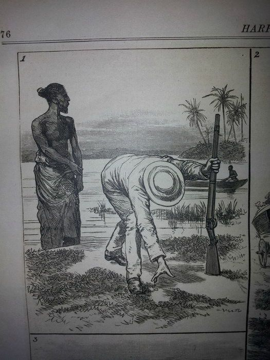 Как охотились на крокодилов в 19 веке крокодил, охота, не для слабонервных