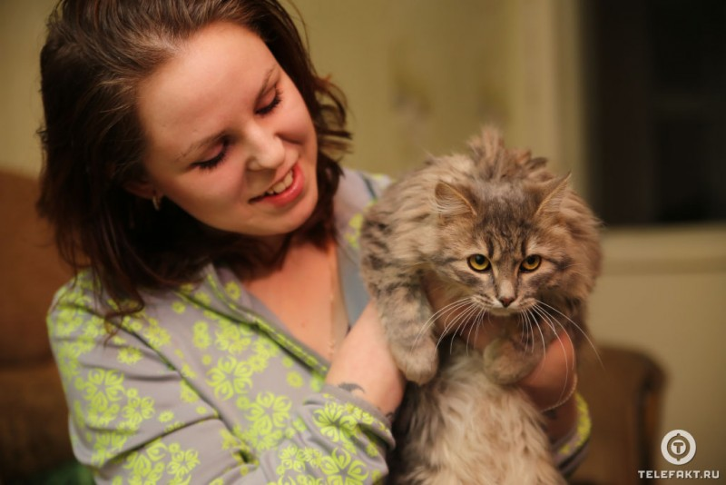 Жизнь в новой семье спасенного в Златоусте примороженного ко льду кота