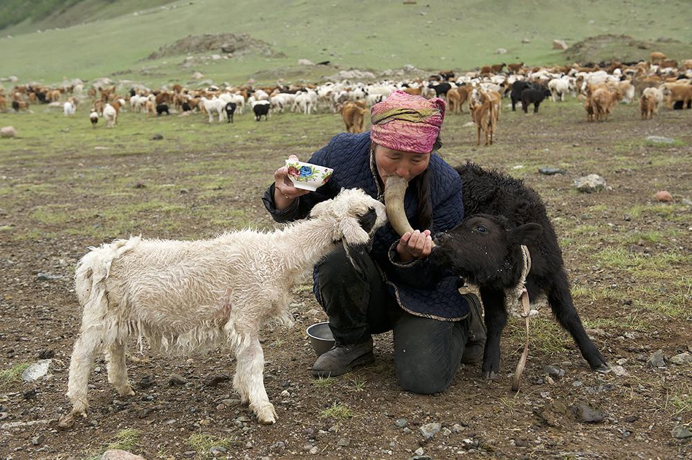 Завтрак по монгольски
