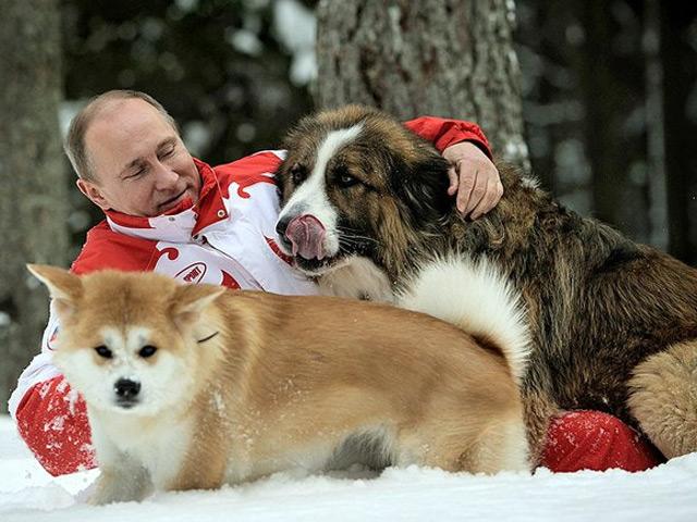 Путин и пёсики