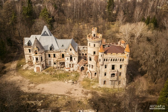 Замок Храповицкого. Аэросъёмка.