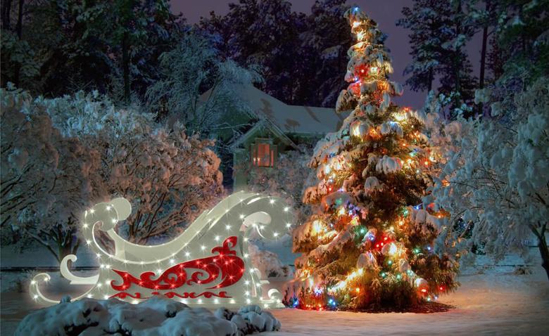 Зимний сад: оформление к Новому году