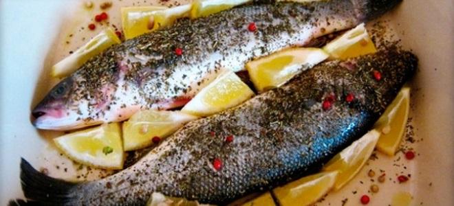 Сибас в духовке – самые вкусные рецепты блюд из запеченной рыбы.