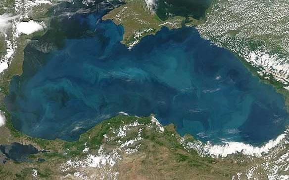 Чем опасны воды Черного моря