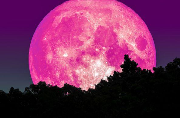 Сегодня жители Земли могут наблюдать редкую розовую Луну
