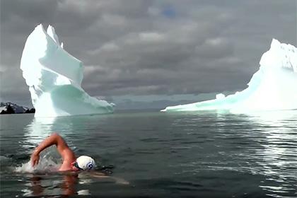 Посол ООН проплыл километр в воде Антарктики