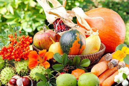 25 советов для богатого урожая