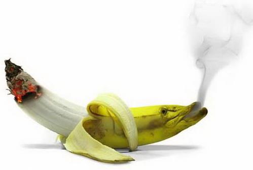 Вегетарианство и курение - несовместимы