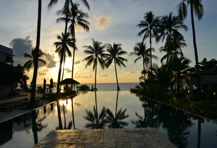 Картинки по запросу кокосовые пальмы в Таиланде и Азии