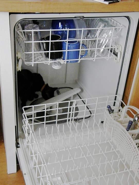 Экономьте время, используя вашу посудомоечную машину для мытья вещи, кроме блюд.