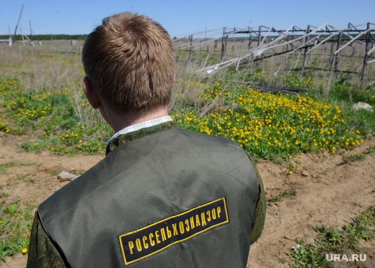Россельхозназор назвал «маразмом» штраф в 2,5 млн рублей уральскому егерю, который отремонтировал дорогу