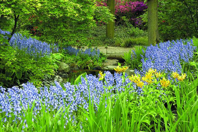 Все в сад: выбираем самое красивое место для отдыха