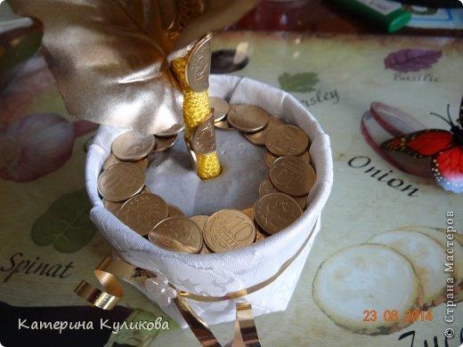 Бонсай топиарий Мастер-класс Моделирование конструирование Мк  Денежное дерево  Монета фото 18