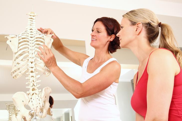 Как создается и разрушается костная ткань?