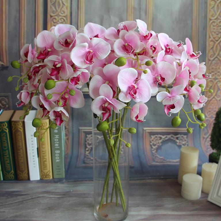 Где растут орхидеи