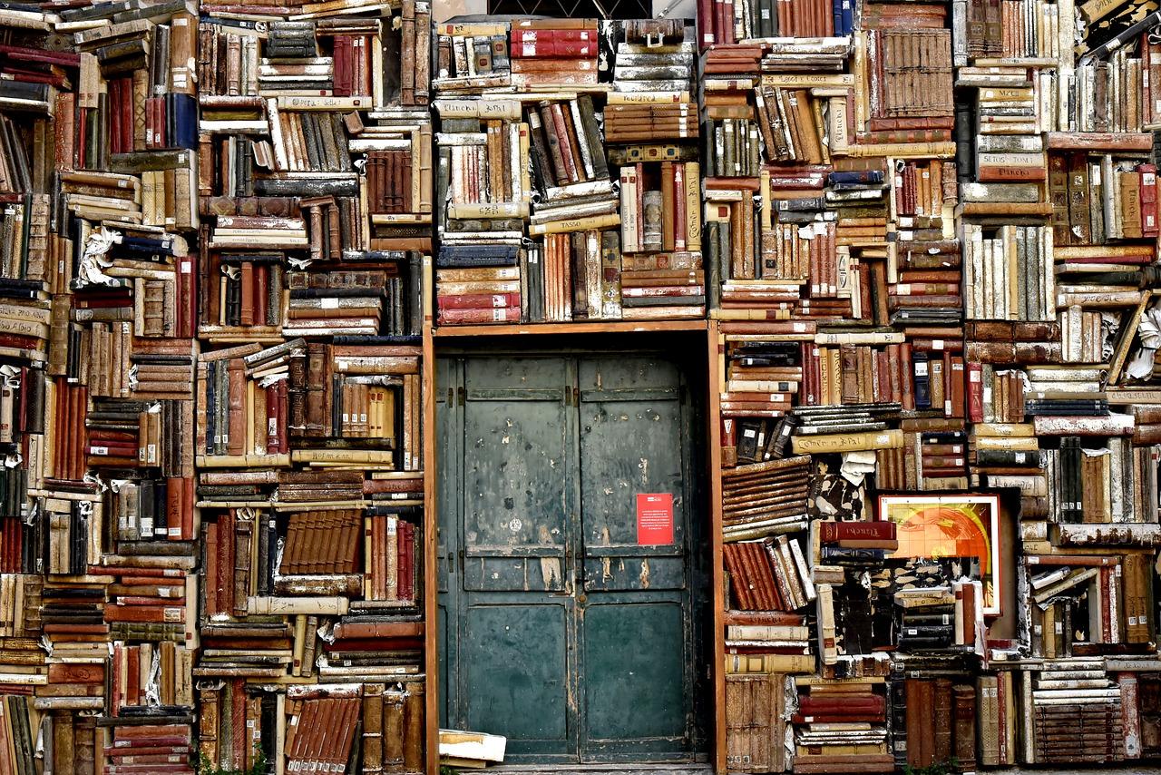 В библиотеки Саратова ходит …