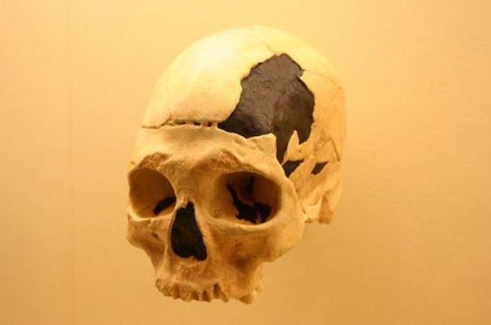 10 неизвестных фактов о доисторической Европе