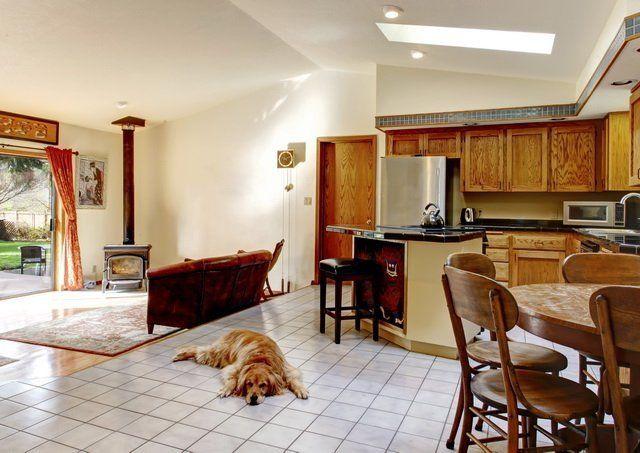 Кухня и гостиная напольные покрытия собака фото
