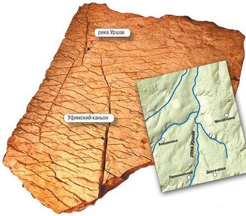 Карта которой 50 миллионов лет.