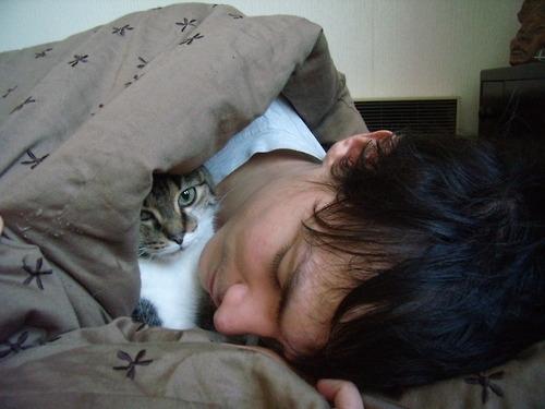 С котом спать лучше, чем с женой!