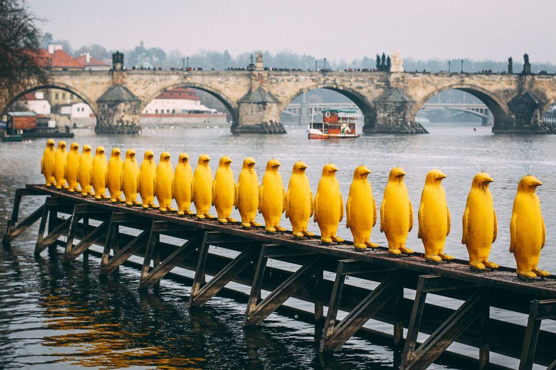 Необычные памятники Праги. Скульптура «Марш пингвинов через реку Влтаву»