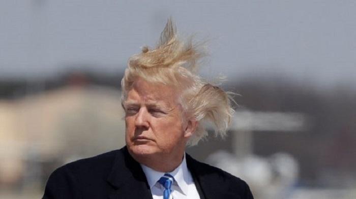 Фото лысого Трампа в «натура…