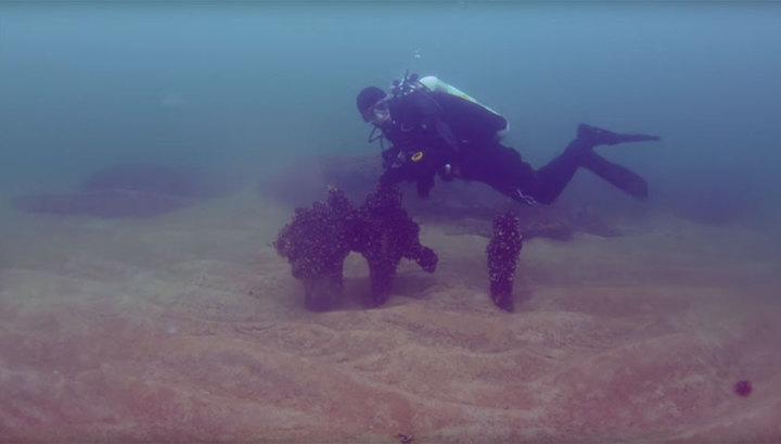 На дне Балтийского моря обнаружили древнее поселение. Видео