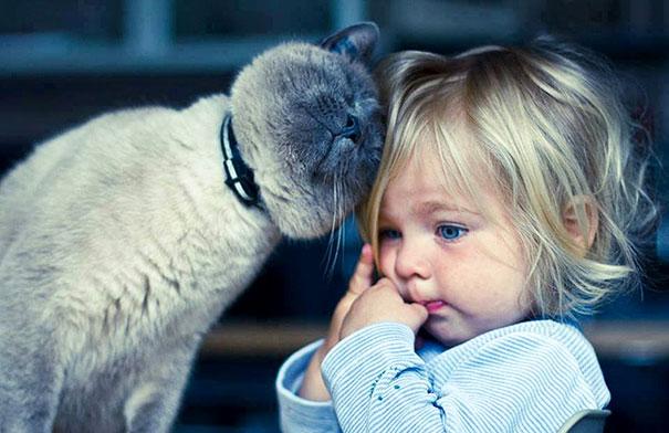 23 замечательных фото доказательств того, что детям нужны кошки