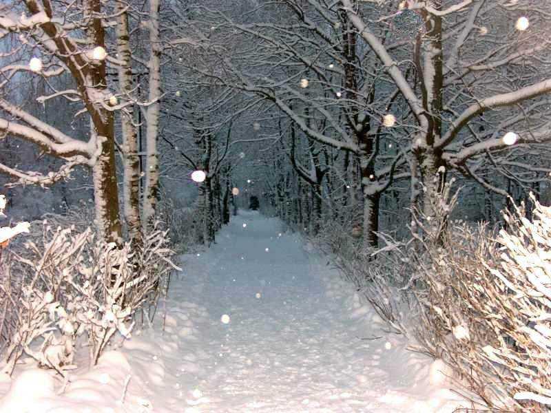 Скачать песню кружевом снег устилает тропинки