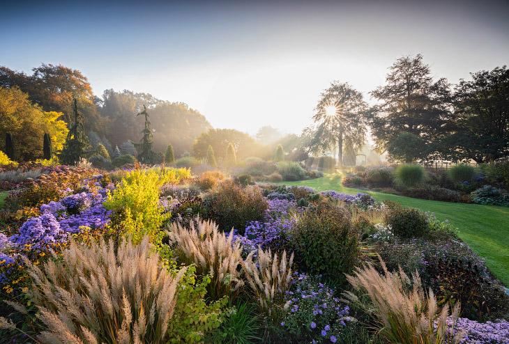 Всемирный конкурс садово-парковой фотографии