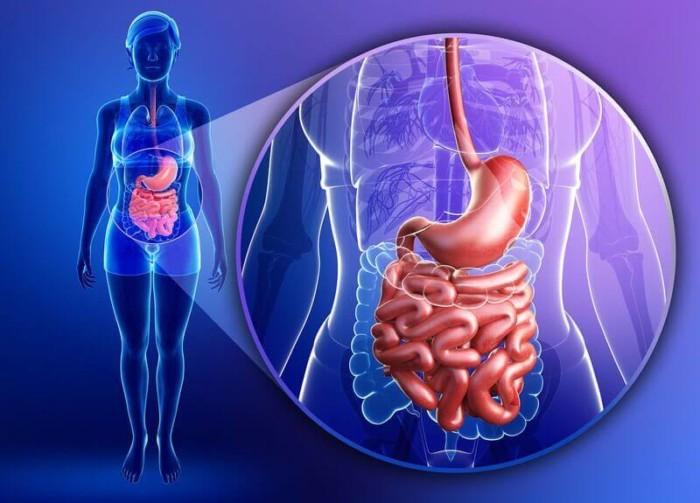 5 признаков того, что у вас нездоровый кишечник