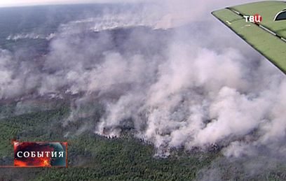 Лесной пожар подобрался к населенным пунктам в Ростовской области