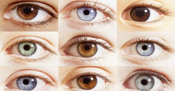 10 крутых фактов о человеческом глазе, которые мало кому известны.