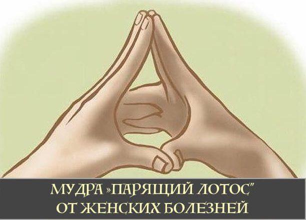 Мудра «Парящий лотос» от женских болезней