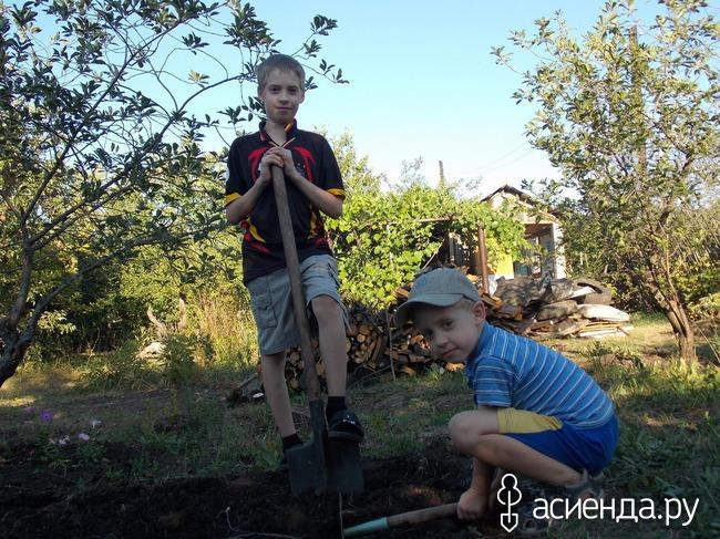 Чем занять детей на даче (очень неплохие советы и хотелки) Воспитание детей
