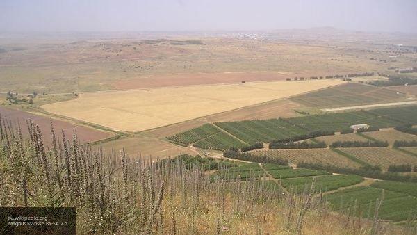 В МИД РФ рассказали о последствиях признания США Голанских высот частью Израиля