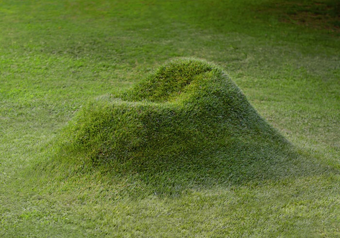 Grow Your Own Grass Chair In Your Backyard