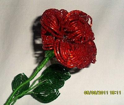 Красная роза из рубки