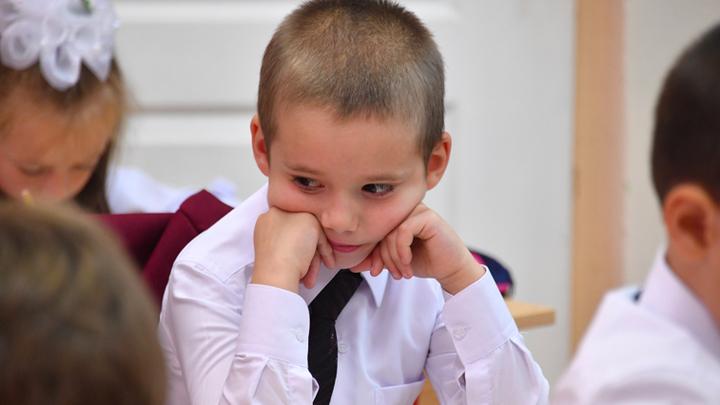 Поездки в Эмираты на пожертвования родителей: Почему бесполезно бороться со школьными поборами
